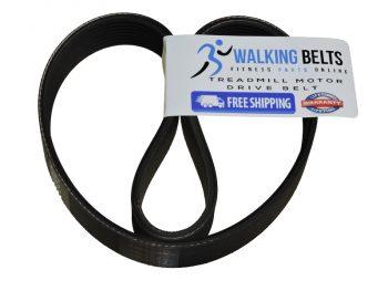 Xterra Fitness - TR6.4 (2013) Treadmill Drive Belt + Free 1 oz. Lube